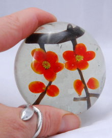 Flower in glass paperweight.