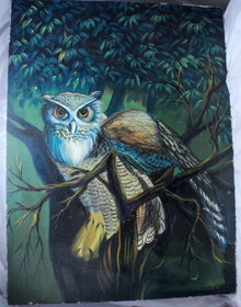 Owl Oil Painting on Canvas  signed Tnaka * PRICED REDUCED! **