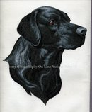 Black Labrador Dog Painting on Cloth * PRICED REDUCED! **