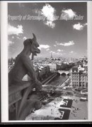 Gargoyle at Notre Dame Paris  with Eiffel Tower View   Black White Photograph , Art Photography
