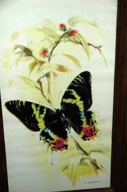 Butterfly Watercolor Print    by B. Ballestar.
