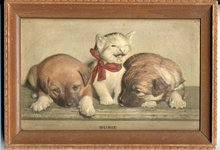 Atlas Embossed Picture Co. 3D Kitten, Puppy Picture